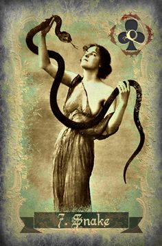 Because sometimes a little snake handling can be therapeutic From the Legendary Lenormand by Carrie Paris www.dodivination.com
