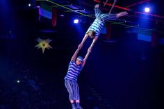 Don't leave yourself hanging out of boredom. Watch our Illusion, Dolphin & Seal Show today. Visit www. Dubai Dolphinarium, Most Beautiful Animals, Hanging Out, Dolphins, Illusions, Seal, Exotic, Bird, Watch