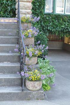 Butchart Gardens--click through to see more photos of this garden!