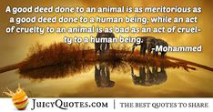 """A good deed done to an animal is as meritorious as a good deed done to a human being, while an act of cruelty to an animal is as bad as an act of cruelty to a human being. Funny Animal Memes, Funny Animal Videos, Videos Funny, Animal Poems, Animal Quotes, Animal Cruelty Quotes, Animal Cartoon Video, Post Animal, Good Deeds"