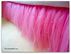 No sew tutu bed skirt, cute for your little girls room! Even my big girl room would like this tutu! Do It Yourself Baby, Do It Yourself Fashion, Tutu Bed Skirts, Childrens Room, Just In Case, Just For You, No Sew Tutu, Diy Tutu, Tulle Tutu