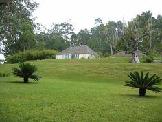 Cinchona Botanical Gardens 1