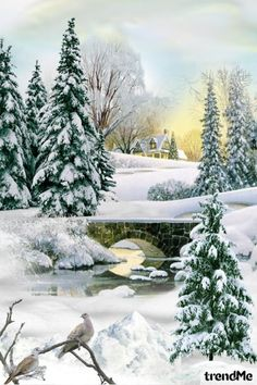 Snowy+Landscape od Mirna M - trendme.net