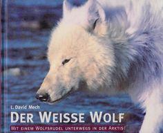 Der weisse Wolf Mit einem Wolfsrudel unterwegs in der Arktis von L. David Mech Wolf, David, Animals, Ebay, Arctic, Prints, Wild Animals, Pet Dogs, Animais