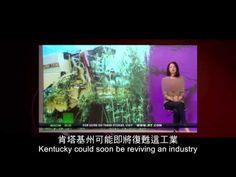 2012榮耀盼望 Vol.197 麻的介紹 - YouTube