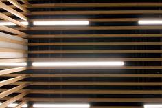 Serif, Blinds, Curtains, Home Decor, Decoration Home, Room Decor, Shades Blinds, Blind, Interior Design