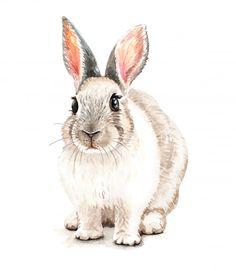 Watercolor cute rabbit illustration. t-shirt print. Premium Vector