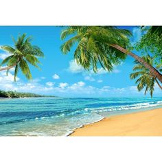 Seaside Beautiful View Backdrops for Relax Vocation Photography Backgrounds