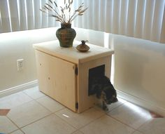 Quick Tips on Preventing Litter Box Problems
