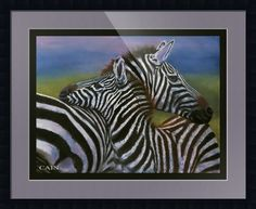 """""""ZEBRAS IN LOVE"""" by William Cain, La Quinta,California // Unique Art Image available as a large Galley Wrap Archival  Print on canvas or paper with a smooth color border or as a smaller art print with a small smooth color border acting as the inside mat.Fully Customizable for your needs. // Imagekind.com -- Buy stunning fine art prints, framed prints and canvas prints directly from independent working artists and photographers."""