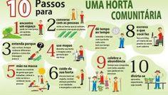 10 PASSOS PARA FAZER UMA HORTA COMUNITÁRIA