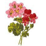 Pretty Floral Embroidery Design 003