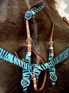 My horses harness