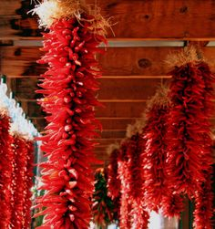 "When my family owned the ""Original Trading Post"" in Santa Fe, every year we would have chile ristras everywhere hanging from the ceiling. What a great smell."