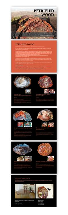 Design and lay-out flyer for Petrified Wood