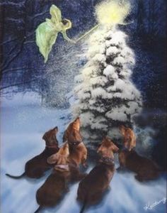 Dachshund Christmas Cards, Postage Stamps, Gift Tags, Stickers and Return Address Labels. Show your Dachshund at Christmas. Dachshund Gifts, Mini Dachshund, Dachshund Quotes, Daschund, Christmas Greeting Cards, Christmas Greetings, Doxie Puppies, Dachshunds, Doggies