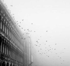 Venice in the foggy mid winter. Stay on Dorsoduro, near the Peggy Guggenheim Collection at DD724.