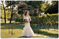 Our Vineyard, Event Center and little slice of heaven. This bride poses with her bouquet under our ceremony arch deep in our grapevines. Ceremony Arch, Wedding Ceremony, Bride Poses, Bridal Portraits, Wedding Bells, Elegant Wedding, Vineyard, White Dress, Bouquet