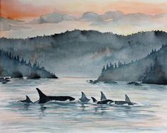 Orca by HarbourViewPaintings on Etsy