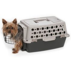 Pet Champion Extra Small Carrier * Nice of you to have dropped by to view the picture. (This is an affiliate link) Pet Transport, Bathroom Design Small, Bathroom Designs, Steel Gate, Buy Pets, Dry Dog Food, Dog Carrier, Pet Carriers, Large Animals