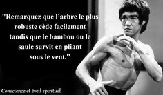 Voici donc 25 citations de Bruce Lee très célèbres. Fidèle à son habitude, ses citations sont courtes, simples et transportent la sagesse.
