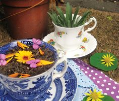 Mud Pie Tea Party from The Garden Classroom: Hands-On Activities in Math, Science, Literacy, and Art by Cathy James.