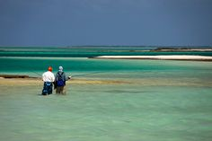 Fly fishing Christmas Island for bonefish, trevally, trigger and milkfish. A must fish destination for any saltwater fly angler. Sport Fishing, Fly Fishing, Lake Tahoe Fishing, Saltwater Flies, West Seattle, Christmas Island, South Lake Tahoe, Fishing Charters, Pipe Dream