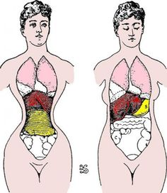 F11-Will the corset diet be the answer to your weight loss dreams? Will it help you get the shape you want once and for all? Well, it does have some pros, but they come with some huge cons.