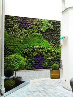 Vertical Garden: A Real Sensation of Being in the Heart of a Luxuriant Vegetation    DesignRulz.com