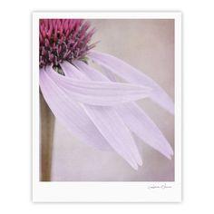 "Iris Lehnhardt ""Windswept"" Lavender Floral Fine Art Gallery Print"