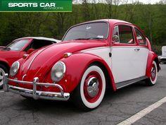 volkswagen-beetle-bug-vw-bug-bear-mountain1024 x 768143.2KBwww.fotografikir.com