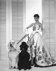 Audrey Hepburn for Sabrina 1954...my next dog....big and no shedding!!!!! And of course I will wear this dress while walking my dog!  :)