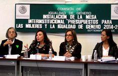 """Mesa Interinstitucional """"Presupuesto para mujeres y la igualdad de género 2014-2015"""" - http://plenilunia.com/noticias-2/mesa-interinstitucional-presupuesto-para-mujeres-y-la-igualdad-de-genero-2014-2015/30647/"""