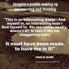 Douglas Adams #puddle #evolution #creationism Douglas Adams, Word Up, I Cool, Atheist, Evolution, Facts, Science