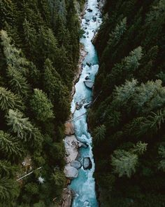 Stream of blue in the vast green  / Valais Wallis Switzerland /  Matt Cherubino Photography / via UNILAD Adventure Say Yes To Adventure