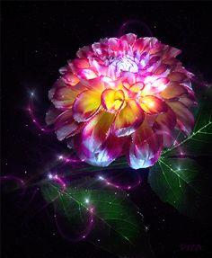 magic flowers - Szukaj w Google