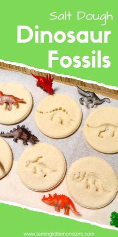 Learn how to make DIY salt dough dinosaur fossils. These easy fossils make a fun and easy STEM activity for toddlers and preschoolers who want to learn through play  #DIY #STEM #dinosaur #toddler #preschool