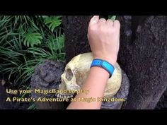 Disney's MagicBands in use at Walt Disney World - Unboxing - FastPass+, room key, games - YouTube