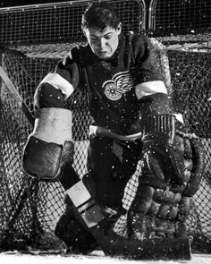 size: Premium Photographic Print: Terry Sawchuck, Star Goalie for the Detroit Red Wings, Warding Off Shot on Goal, at Ice Arena by Joe Scherschel : Artists Hockey Goalie, Hockey Teams, Hockey Players, Ice Hockey, Goalie Gear, Hockey Stuff, Detroit Hockey, Detroit Sports, Hockey Pictures