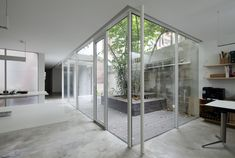 Gallery of Office Around a Tree / Lukstudio - 2