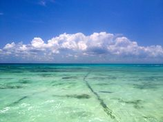 Amazing. Amazing. Amazing. Amazing waters here in Mexico.