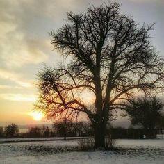 The sunrise two years ago (04.02.15)...  .  .  #tbt #twoyearsago  #dawn #skyporn  #awesomeshots #sunrise_lovers #clouds  #sunrise #amanecer #crepúsculo #salidadelsol #Dämmerung #Sonnenaufgang#BadenWürttemberg #Höri #Germany #Alemania #Deutschland  #samsung #S6310N
