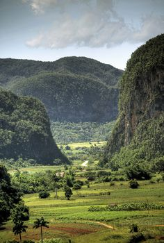 Valle de Vinales Pinar del Rio, Cuba. Prime (volcanic/limestone) tobacco country. Sigh.