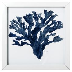 Framed Blue Coral A 18x18