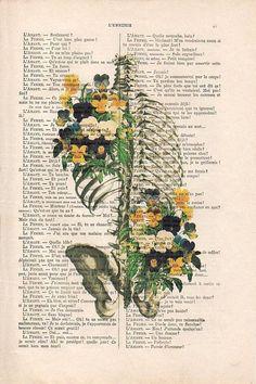 12 best medical wallpaper images backgrounds medicine anatomy art rh pinterest com