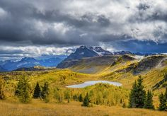 ***Sunshine Meadows (Banff, Alberta) by Catalin Mitrache on 500px