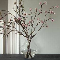 Tulip Magnolia Branches in New SHOP Flower Show at Terrain