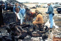 Burning Tree Mastodon excavation (mid-December 1989), Burning Tree Golf Course, Heath, east-central Ohio.