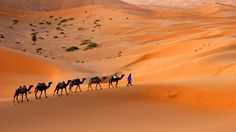 Tips To Start Morocco Private Tours To Find The Travel In Style