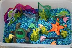 Ocean sensory box. For that lover of the sea